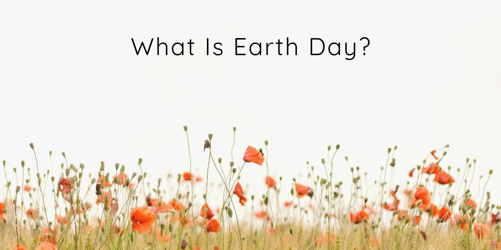 Earth Day is a worldwide celebration for the environmental movement. Over the years the goals have shifted but the goal remains the same, to be a voice of reason for the earth and to help reduce the impact of humans upon the place we all call home.